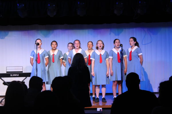 Our Lady of Mercy Catholic College Burraneer - Performance
